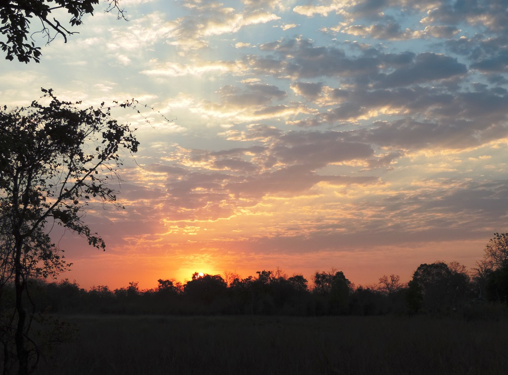 Happy new year 2017-SEO best practices
